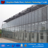 Serra idroponica di vetro di Multispan della serra del coperchio della rete dello schermo