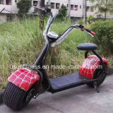 Fornitore della Cina di motorino elettrico