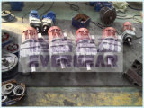 Engrenagem helicoidal de engrenagem helicoidal Série R