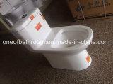 Tolette di un pezzo degli articoli sanitari della stanza da bagno (702)