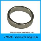 Anello del magnete del cilindro di NdFeB neo magnetico