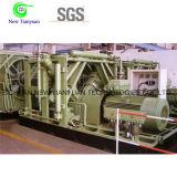 標準給油端末のための圧縮された天燃ガススキッド取付けられたCNGの圧縮機