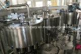 O baixo custo caixa de grãos a linha de enchimento de suco de frutas e as máquinas