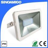 좋은 품질 100W LED 플러드 빛 단순한 설계 작풍 iPad LED 플러드 빛
