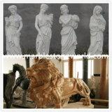 Statua animale della scultura del leone del granito intagliata mano per la decorazione (CV005)
