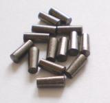 Winter에 있는 탄화물 Type Nail/Pin Used