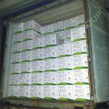 Organisches Düngemittel-Huminsäure-Oberster Huminstern 100