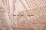Piel del piel de la puerta de la ceniza/madera de la chapa de la puerta
