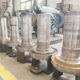 Granulator van de Korrel van het Zaagsel van het Stro van de Schil van de Rijst van de biomassa de Houten
