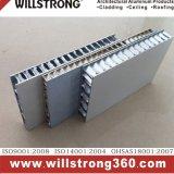 Comitato di alluminio del favo della Cina per rivestimento