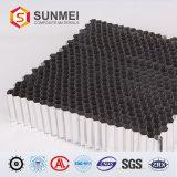 Feritoia di alluminio del favo, resistenza della corrosione eccellente, memoria di favo di alluminio microporosa