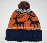 新式のポンポン(HY041715)が付いているジャカードによって編まれる帽子