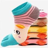 Tipo popolare di nuovo disegno calzini 100% della punta di inverno cinque del cotone