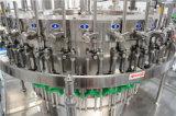 Velocidade alta 5000bph Bottlling de Água a Gás e linha de embalagem