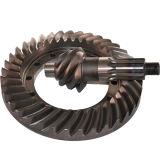 Ingranaggi conici personalizzati degli ingranaggi conici BS6076 6/37 della parte posteriore di azionamento dell'asse dell'automobile di spirale elicoidale del camion