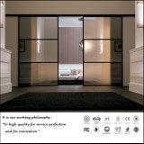 Porte coulissante en verre de style classique pour chambre à coucher (ZH-5084)