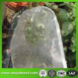 Sacs de pommes de terre, Agriculture Nettoyer les insectes