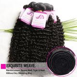 &Bleached malaysisches Jungfrau-Haar der Karosserien-10A malaysisches der Wellen-4bundles, das weiche malaysische Haar-Extensions-Menschenhaar-Webart-Bündel gefärbt werden