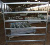 el panel oval de la yarda del búfalo del tubo de los 2.1m del x 1.8m/el panel de la yarda del caballo
