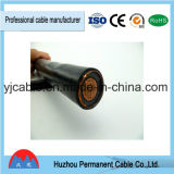 Câble d'alimentation de faisceaux de Yjv de qualité/Yjv22 /Yjlv /Yjlv22 0.6/1kv 4