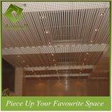 30W*120h熱い販売の装飾的なアルミニウムストリップのバッフルの天井
