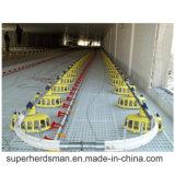繁殖動物の鎖の送り装置のために農業家禽の機械装置装置