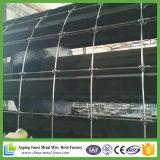 중국 공장 최신 담궈진 직류 전기를 통한 가축 담