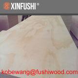 CDX contrachapado de madera de pino, irradiar la madera de pino