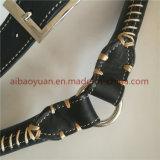 Costura perro Trenzado Negro correa de cuero combinada de Edg