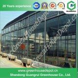 Serra di vetro intelligente per la piantatura di verdure moderna