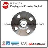 Flanges profissionais do aço da flange/carbono da alta qualidade