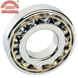 Angular Contact Ball Bearing (7219CM, 7219CJ, 7219B)의 신호 Row