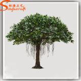 Décoration de jardin de haute qualité usine artificielle Bayan Ficus Tree