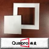 Panneaux d'accès en plastique de plafonds artistique/hanches/ABS AP7610