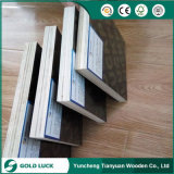 18mm Combi Core WBP Glue Brown Film Faced Plywood