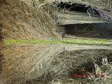 Big Bamboo Broom