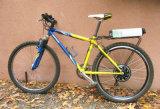 전기 자전거 36V 12ah를 위한 리튬 건전지 LiFePO4