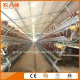 Schlüsselfertige automatische Huhn-Schicht-Batterie mit one-stop Service