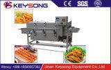 Machine Flouring de Preduster de viande d'hamburger de bonne qualité