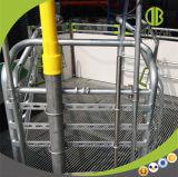 Altos embalajes de parto galvanizados Strengh para los embalajes de parto de la alta calidad de la puerca para la venta