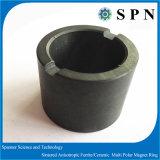 Magnete del ferrito//Ceramic a magnete permanente con tecnologia asciutta della pressa per il rotore del motore