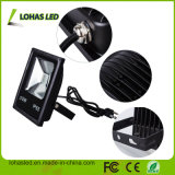 Lâmpada de iluminação LED 10-100IP65 W Projector LED RGB