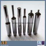Fornecedor de punções de carboneto de tungsténio de precisão para o molde de Estampagem