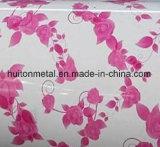 Bobine en acier décorative du modèle PPGI de fleur de matériau de toiture