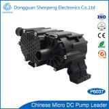 다단식 12V 24V 높은 교류 순환 DC 소형 펌프