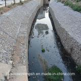 Acoplamiento hexagonal de Gabion de la piedra de pavimentación de la tela metálica de Sailin