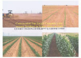 Abono biológico de Unigrow para el establecimiento del maíz