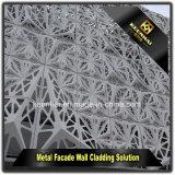 Panneau moderne en aluminium perforé de façade de construction de tôle