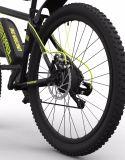 Les hommes de trains de banlieue à longue portée vélo Vélo électriques haute puissance