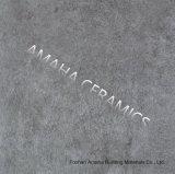 La Hacer estallar-Manera personalizó los azulejos rústicos con Gigi semi pulido para el suelo (BMR20WP)